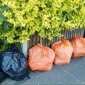Black and orange sack waste analysis