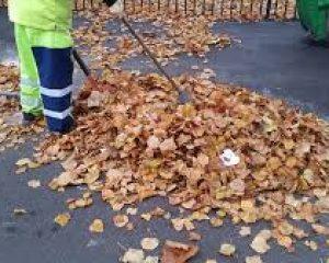 Council Autumn Leaf Clearance