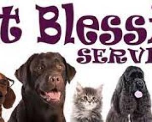 Pet Blessing at All Saints Church, Cranham