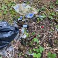 Residents' Association litter pick in Cranham Brickfields